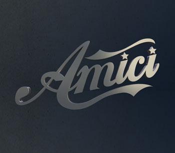 Amici 2013 logo