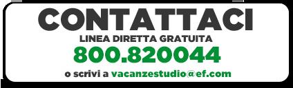 Vacanze Studio EF contattaci