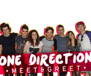 meet one direction info
