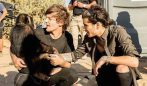 louis tomlinson zayn malik video steal my girl