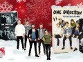idee regalo natale 2014 one direction