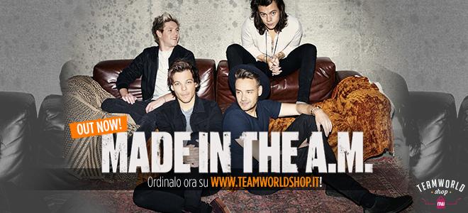 One Direction Team World Shop