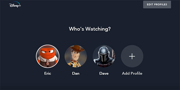 DisneyPlus profili