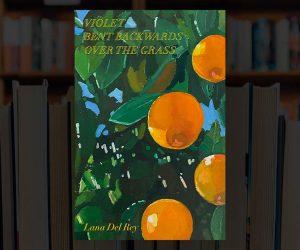 Libro poesie Lana Del Rey