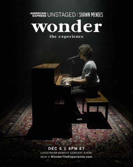 SHAWN MENDES Wonder-TheExperience