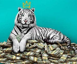 La Tigre Bianca Netflix