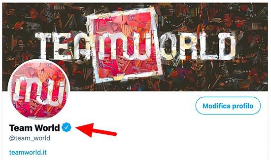 profilo verificato twitter team world