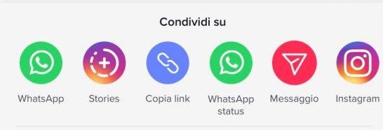 Condividere tiktok su instagram